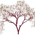 Almond tree free vector