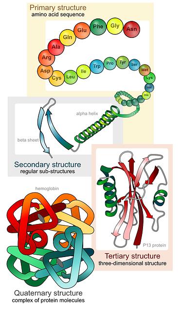 Biology structure illustration vector