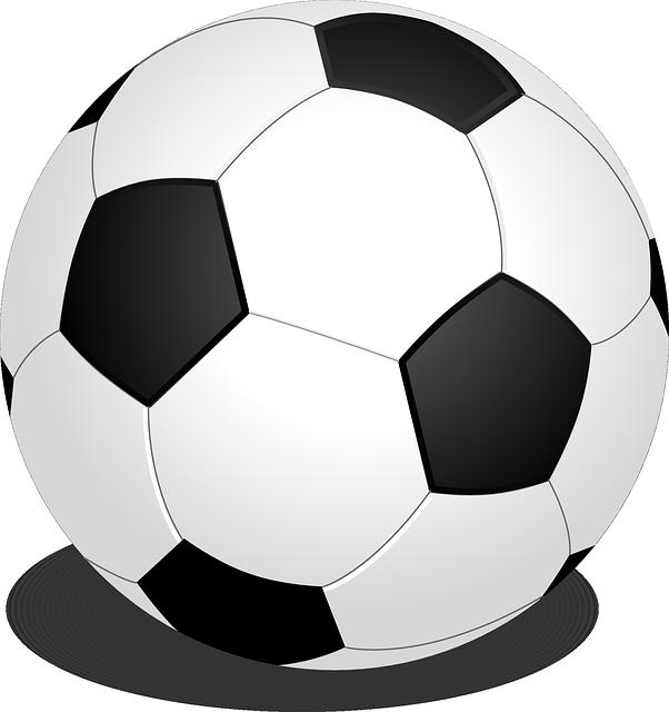 Black white football /Soccer Ball Vector