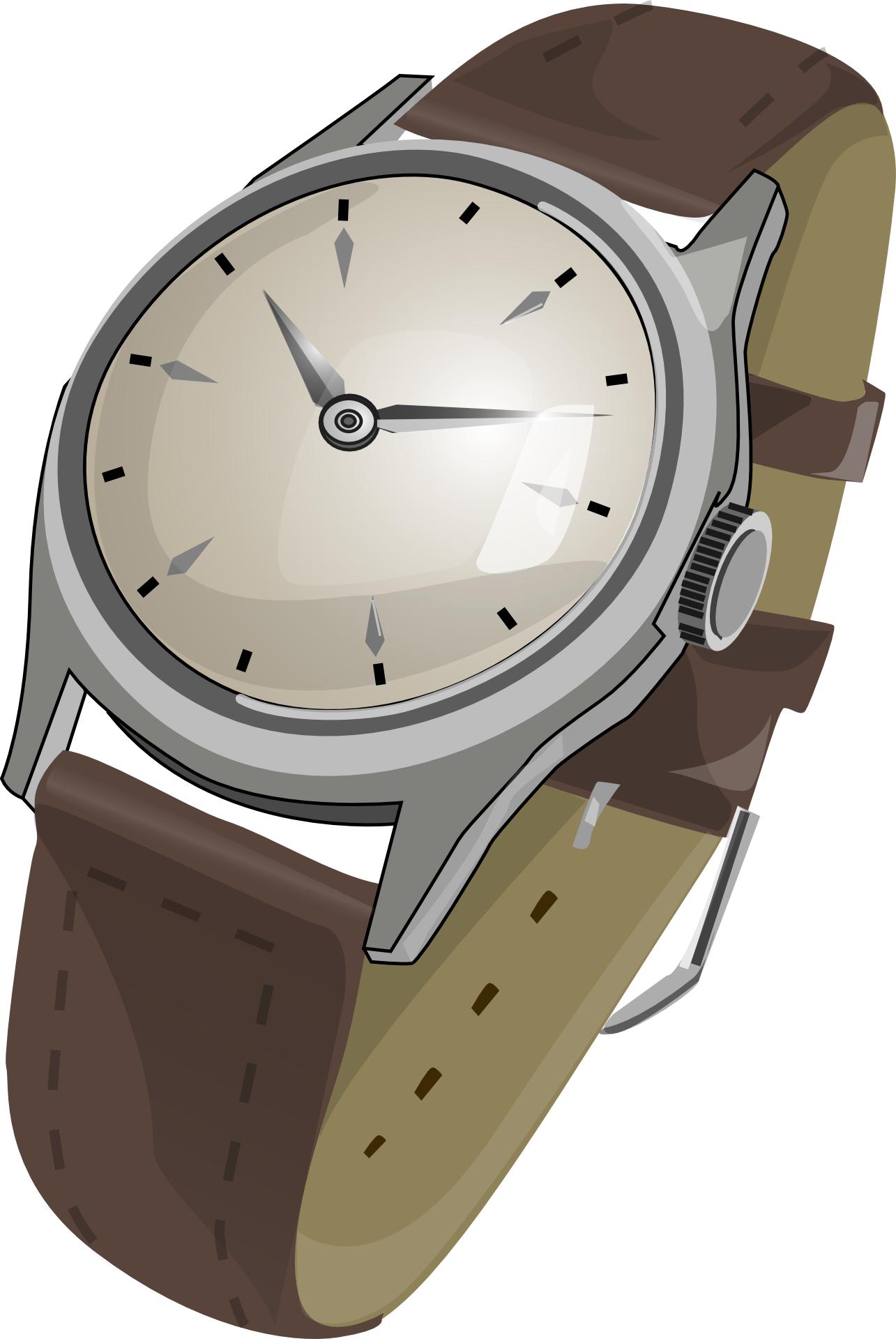 Brwon wristwatch,clock vector