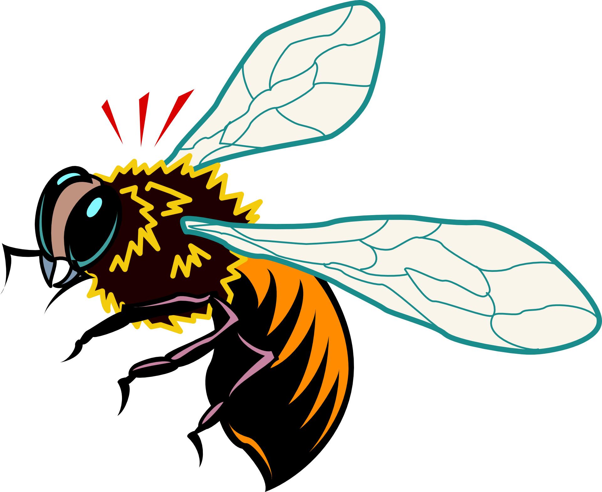 cartoon animal bee honey bee vector free psd vector icons