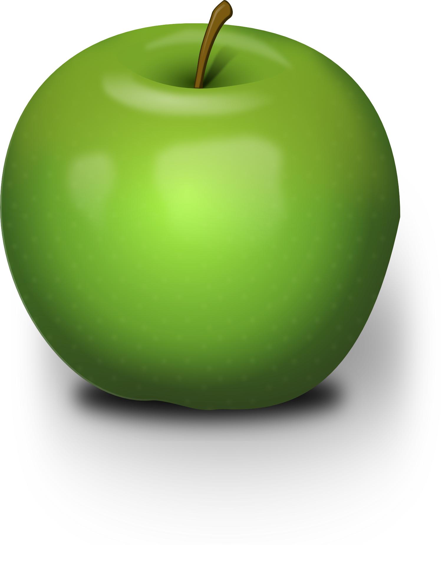 Green apple,fruit vector