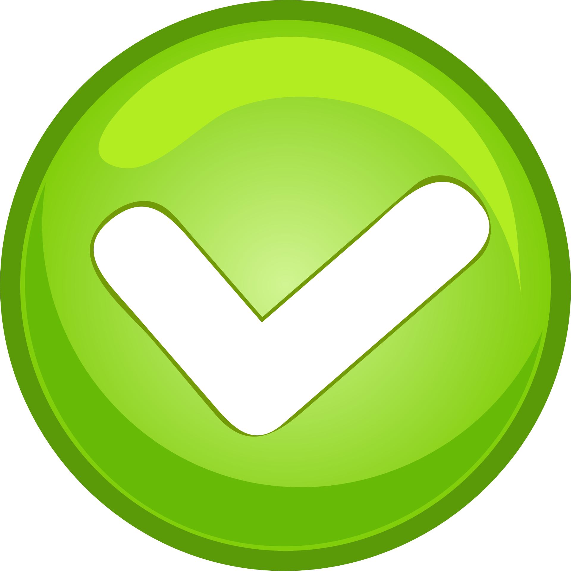 Green checked button vector