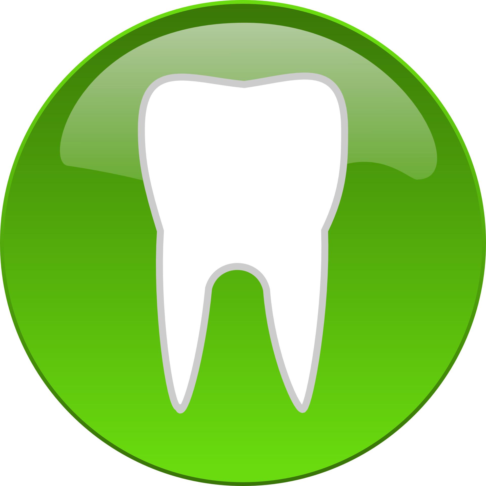 tooth logo clip art - photo #15