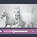 Modern Flat Video Player Design(Free PSD)