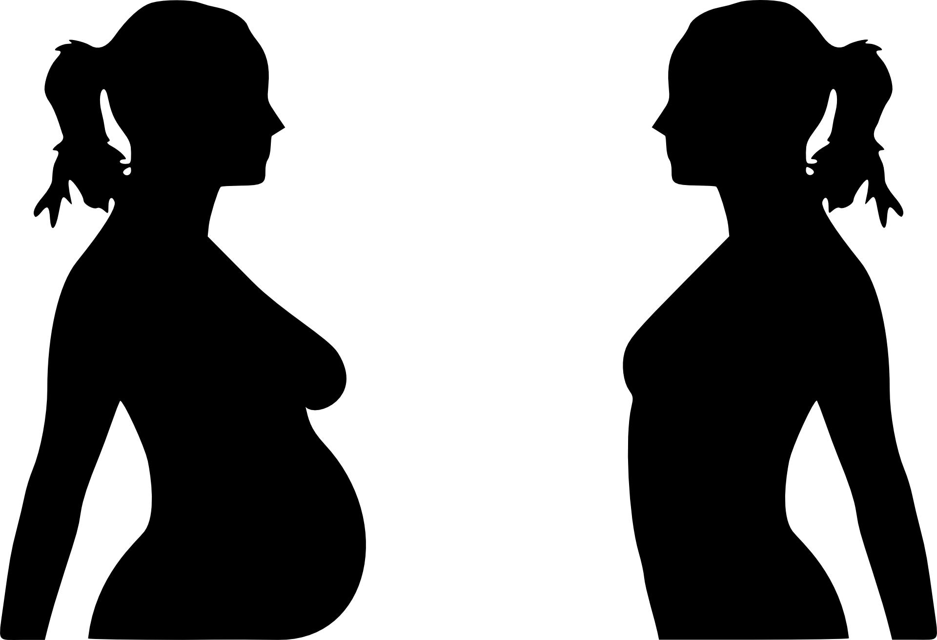 Pregnant woman & non-pregnant women silhouette vector
