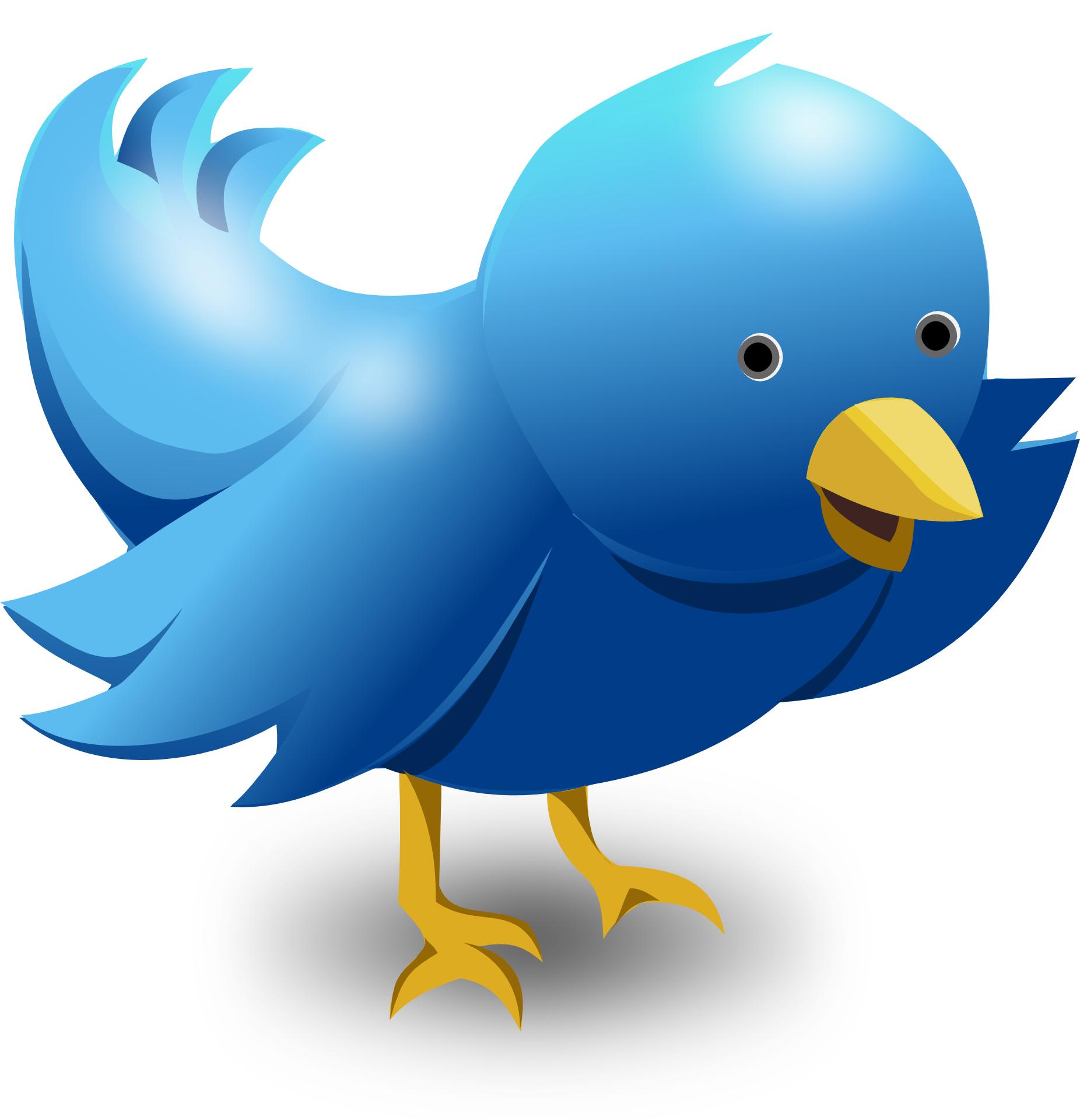 Symbol of twitter vector,cartoon blue bird