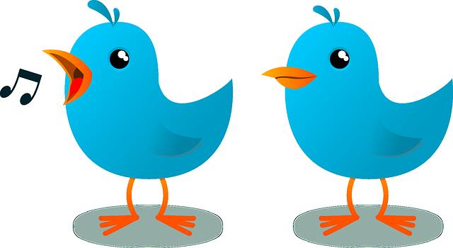 blue cartoon birds vector-symbol of twitter