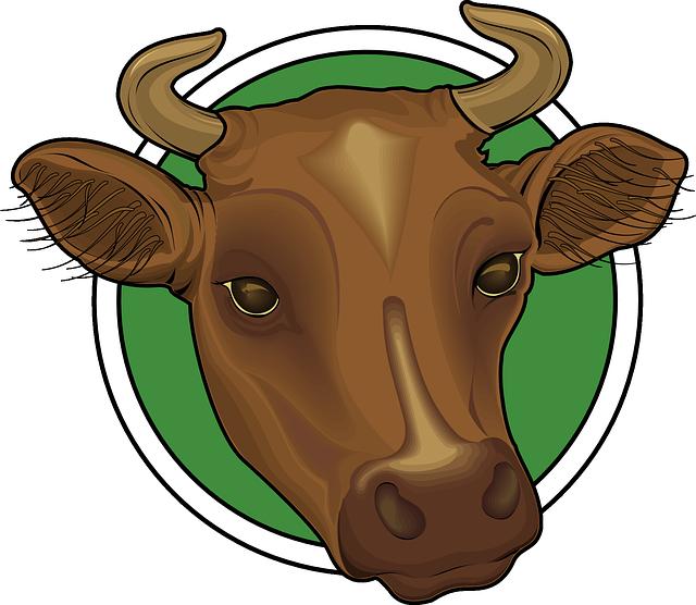brown animal cow horns,Tauren decoration
