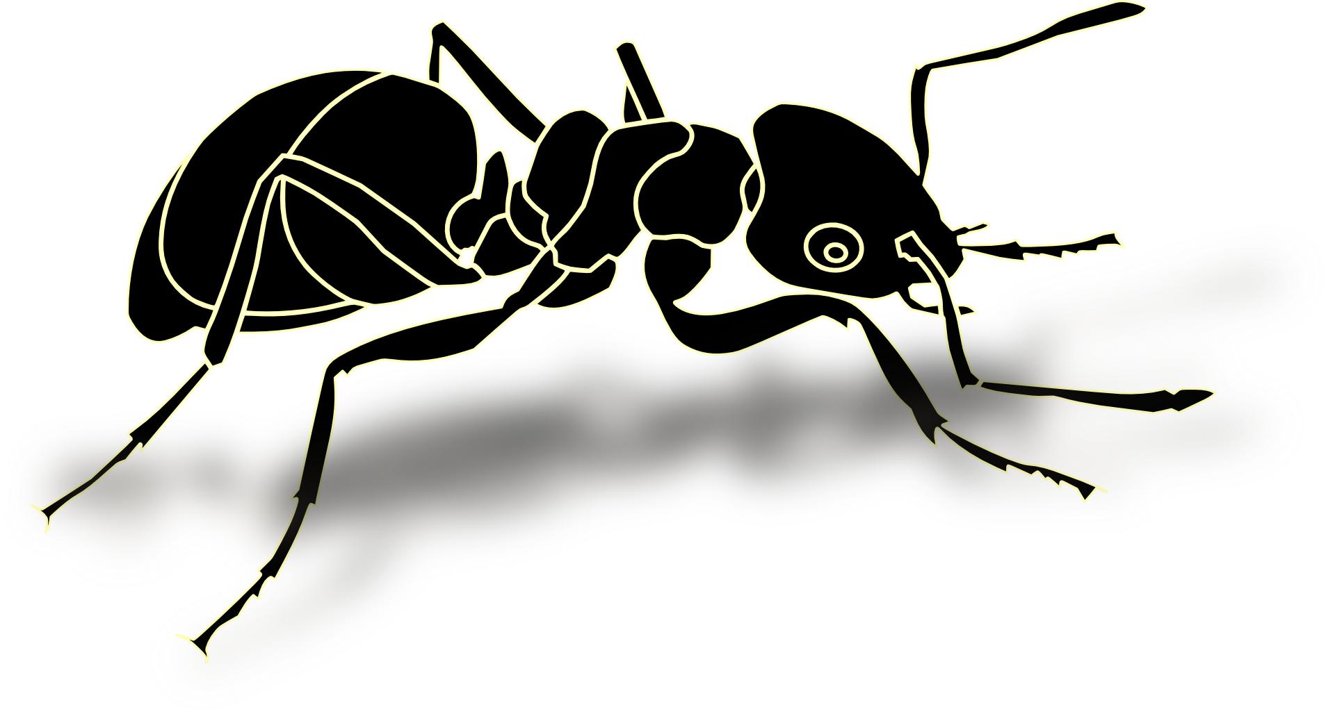 cartoon black ant www pixshark com images galleries Shark Fishing Clip shark drawing clip art