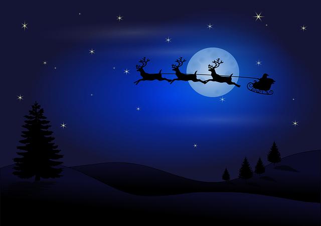 cartoon sledge & moon christmas vector