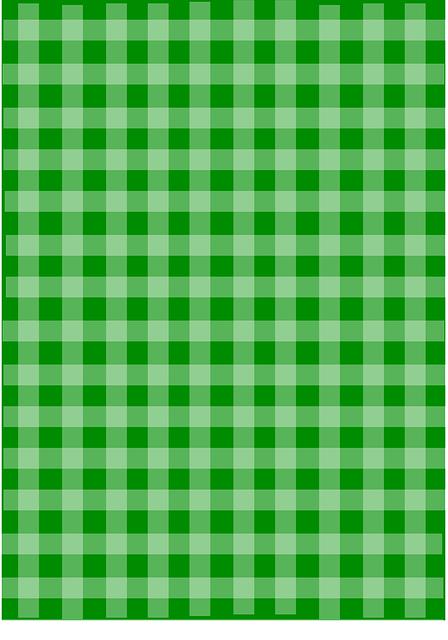 Green plaid gingham vector