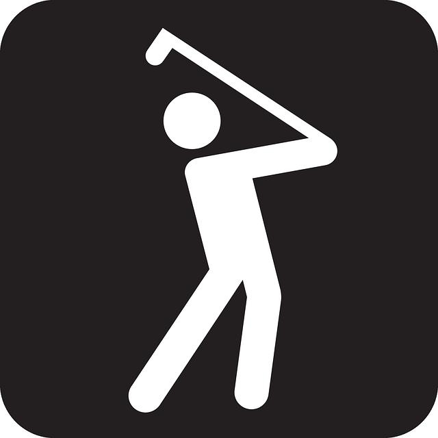 simple play golf vector