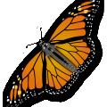 Monarch butterfly vector