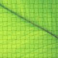 Cool Strips Patterns Photoshop