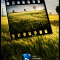 Photoshop Film Frame Template PSD